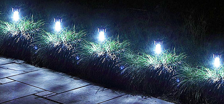 Best solar landscape lights by Mage Solar