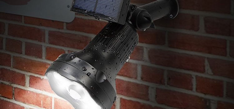 Solar Spot Lights for Water Features