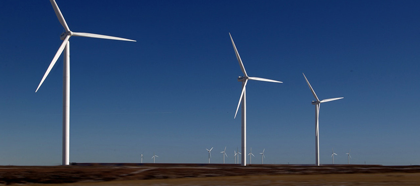 Wind Turbines: Can They Turn a Profit