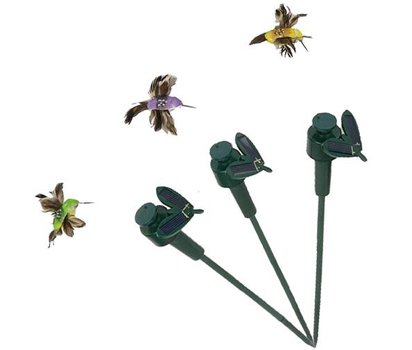Saguaro Solar Flying Hummingbirds